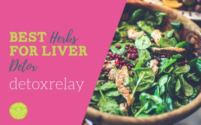 Best Herbs For Liver Detox